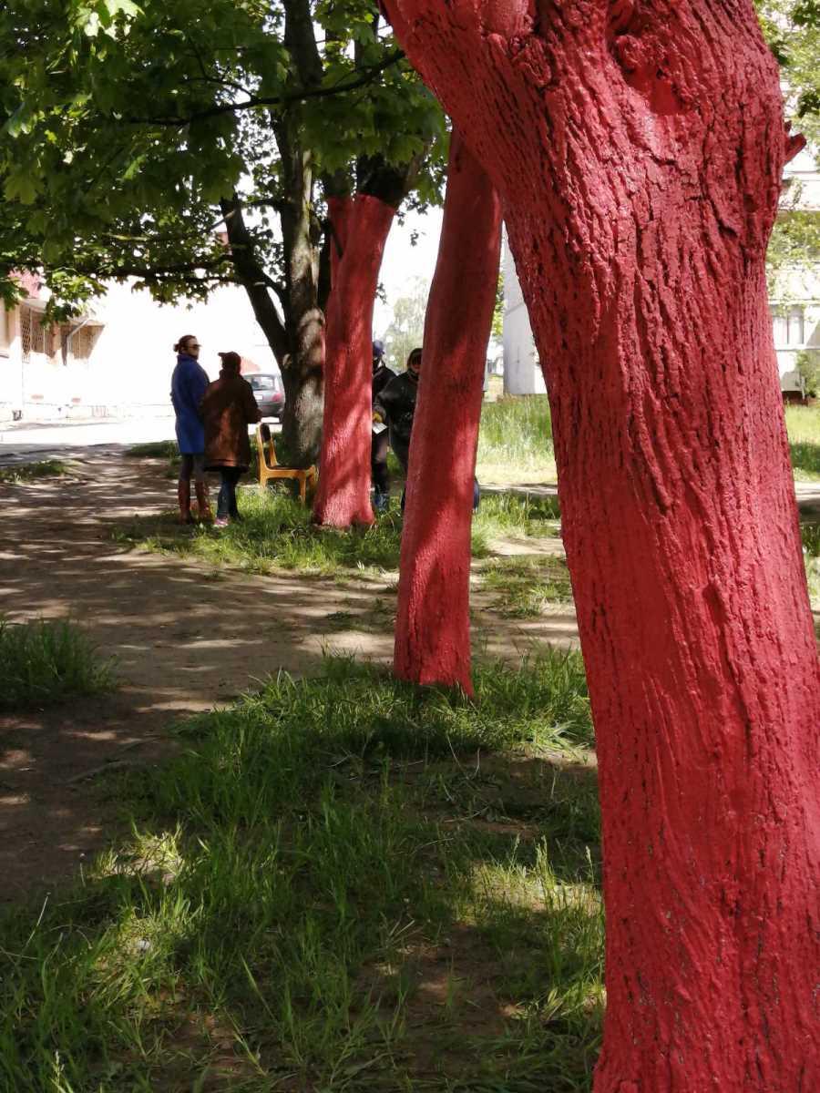 Во дворе хореографической школы в Борисове появилась настоящая Страна чудес