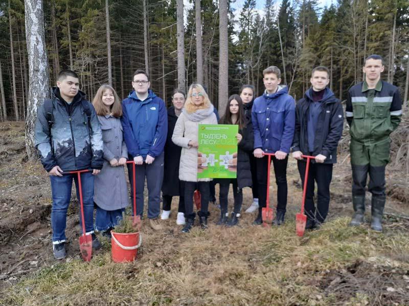 Учащиеся СШ №2 высадили 600 елей и навели порядок в лесу