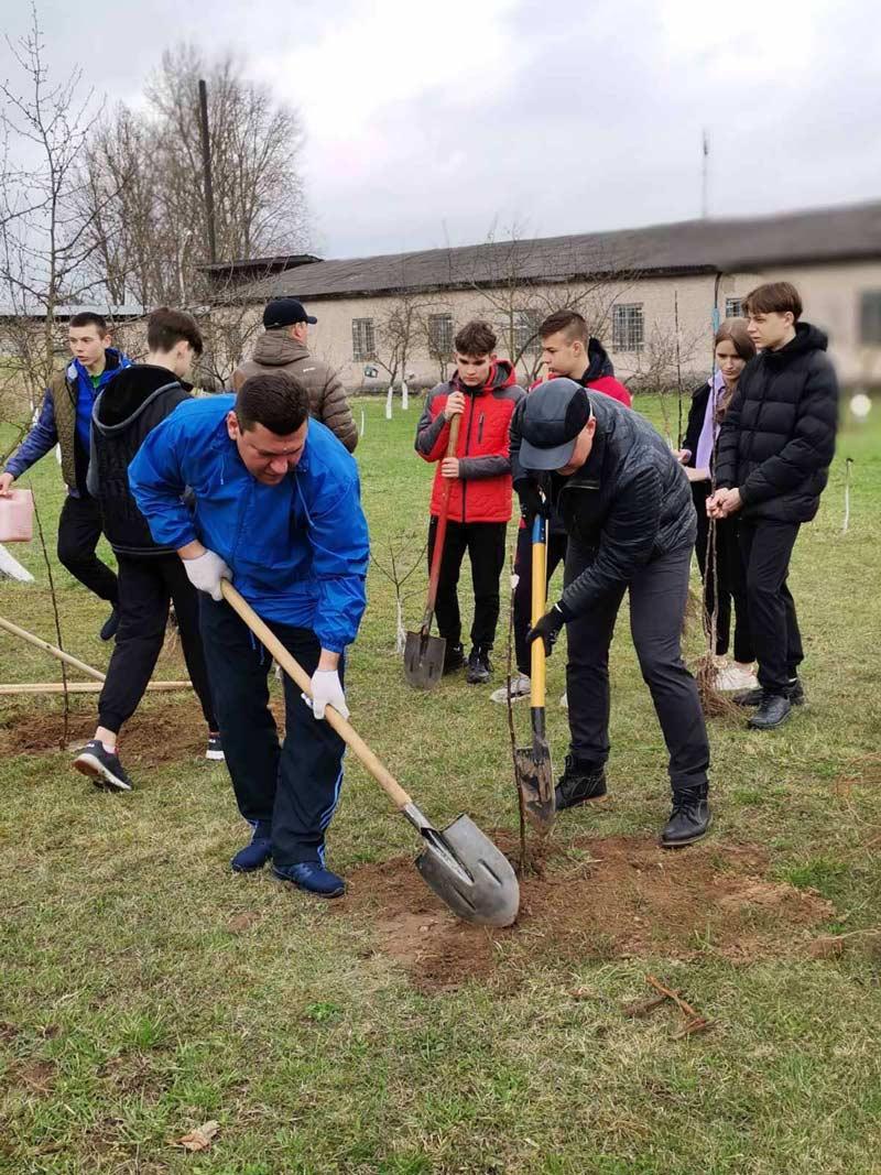Фруктовый сад посадили депутаты и учащиеся у средней школы №17