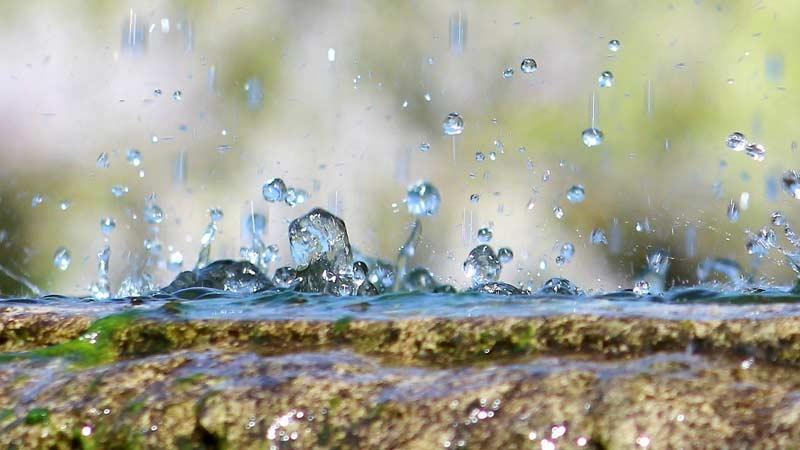 Дожди и грозы ожидаются в Беларуси на этой неделе