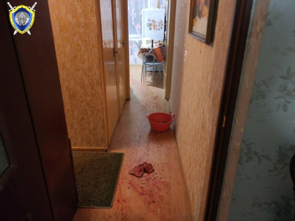 Житель Витебска ударил ножом жену и младенца
