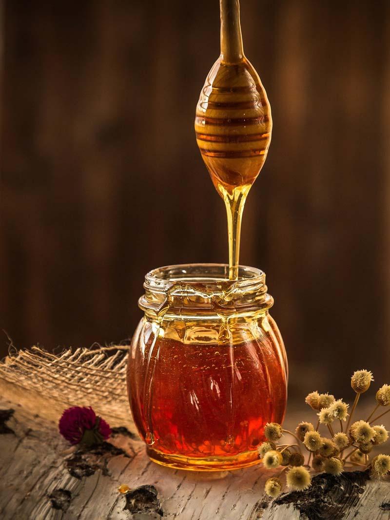 Как наш журналист осваивал профессию пчеловода