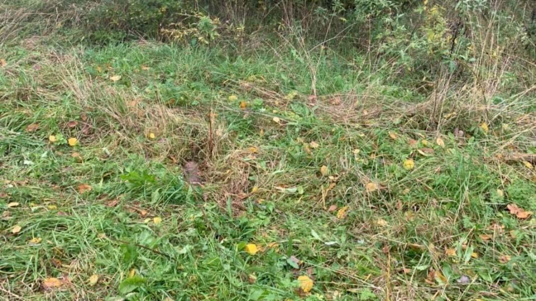 В Борисове нашли два артиллерийских снаряда разного калибра